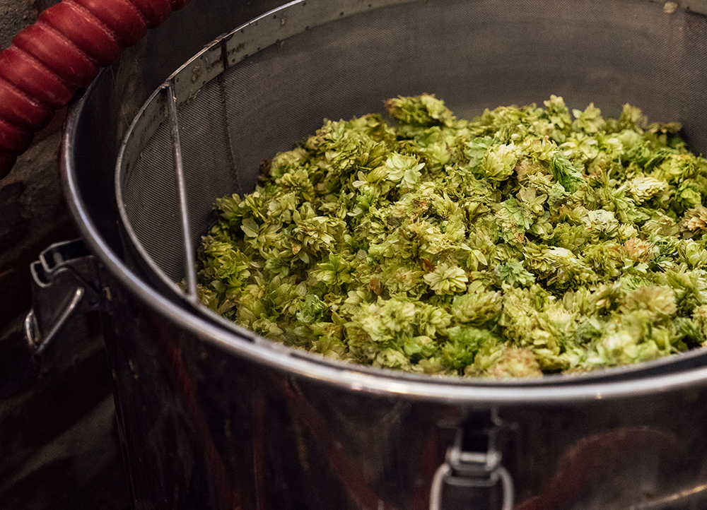 Vessel full of hops